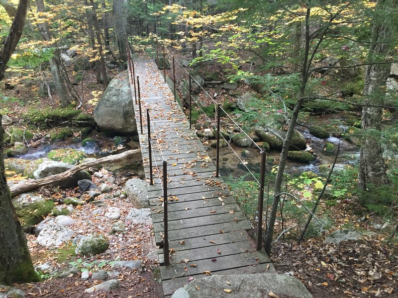 Bridge leading to the Blueberry Ledge Cutoff Trail.