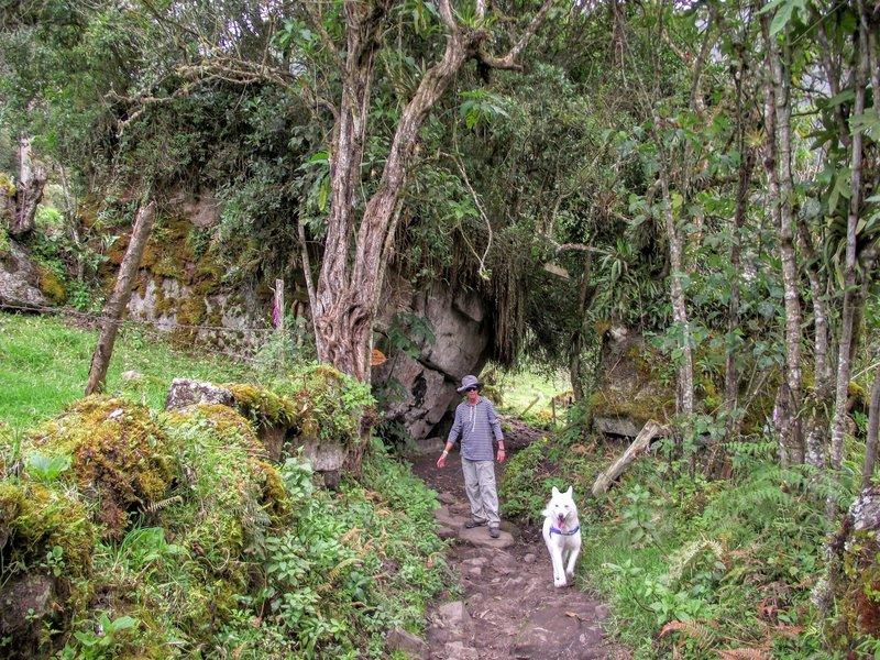 Walking to the waterfalls.