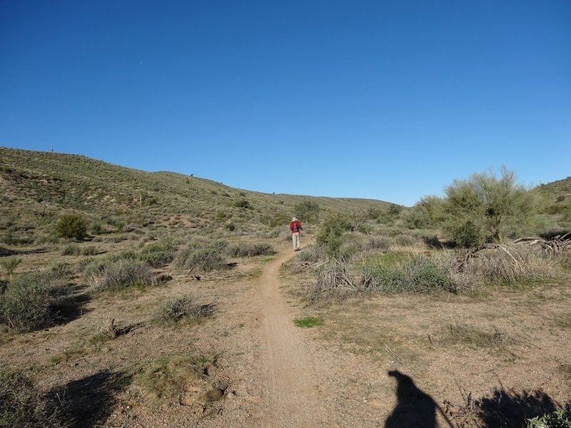 The Cinch Trail in the Lousley Hills at McDowell Mountain Regional Park. with permission from Maricopa-County-Parks