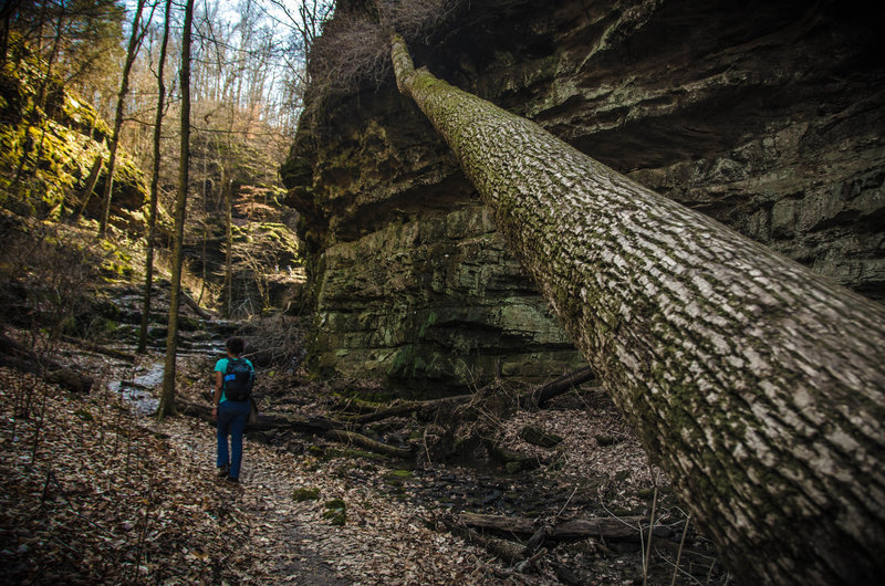 Hiking through one of the tributary-carved canyons.