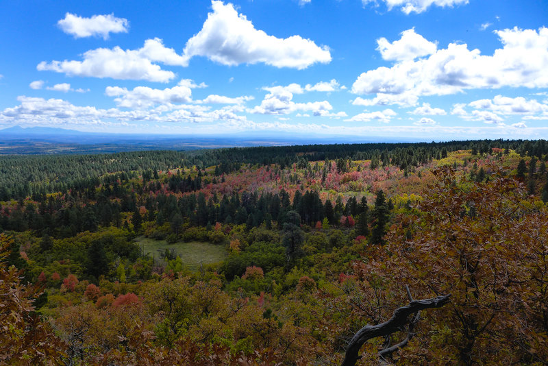 Fall views for miles.