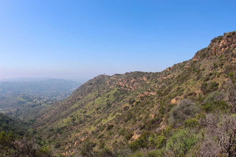 Cahuenga Peak view.