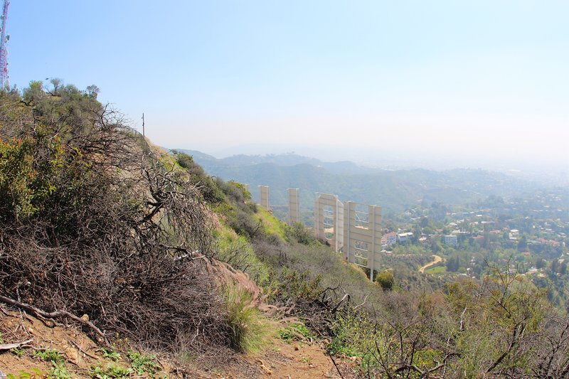 View from behind the Hollywood Sign.