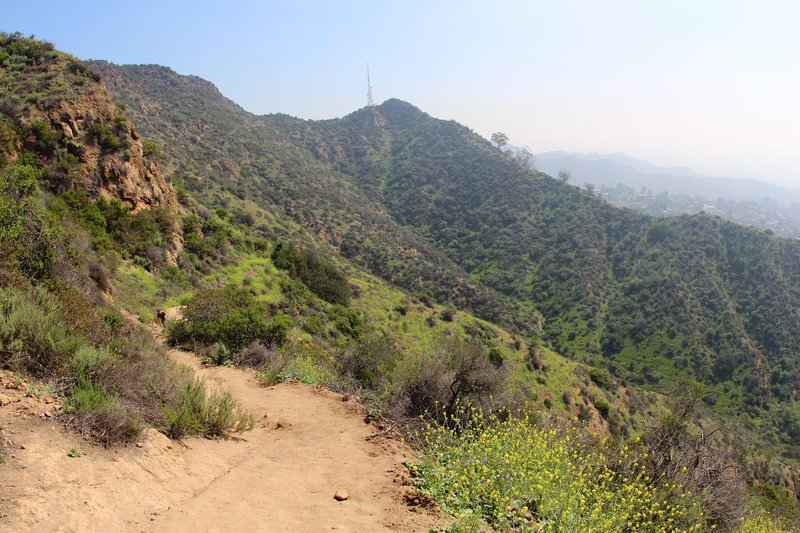Heading up the Tree of Life Trail.