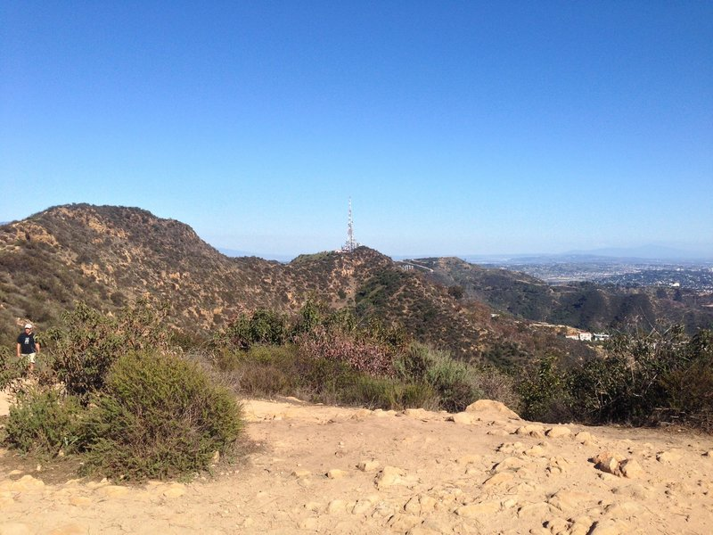 The view from the Wisdom Tree.