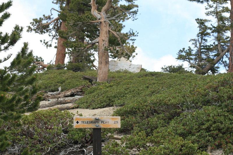 Telegraph Peak sign.