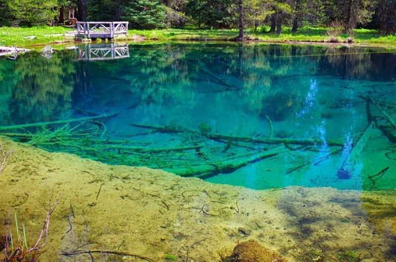Little Crater Lake is as blue as its namesake and 30-35 feet deep. No swimming or dogs in water please. Photo by Gene Blick