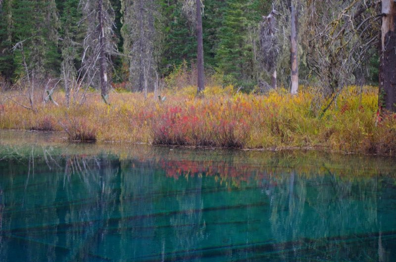 Little Crater Lake in fall with willows turning. Photo by Gene Blick.