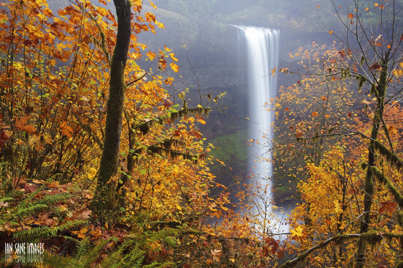 South Falls framed by fall foliage.