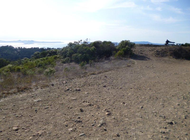 Seaview Trail view.