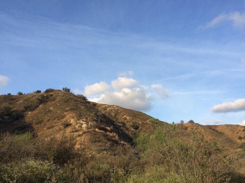 Near Telegraph Canyon.