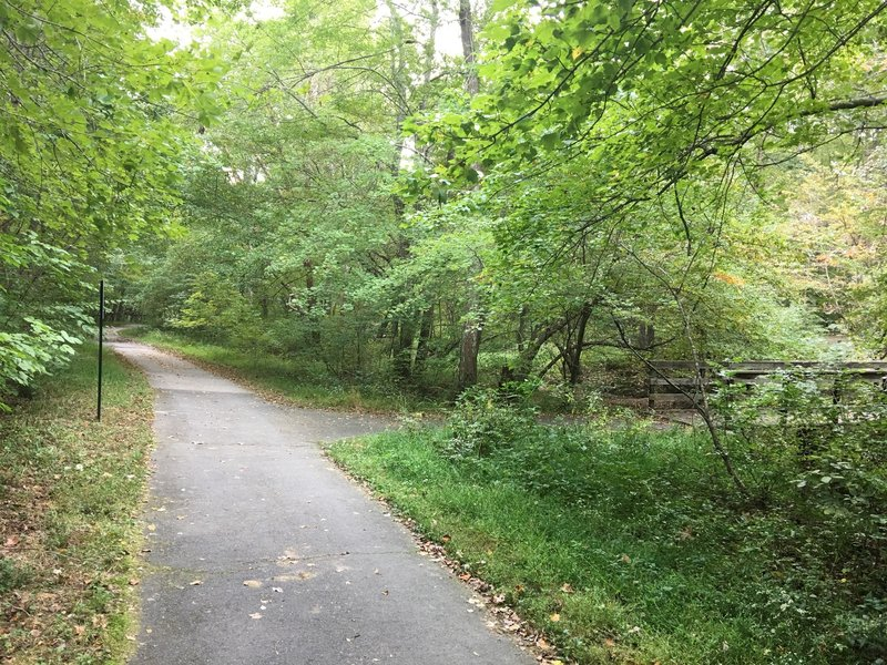 Main trail continues straight ahead. Bridge crosses South Run stream.