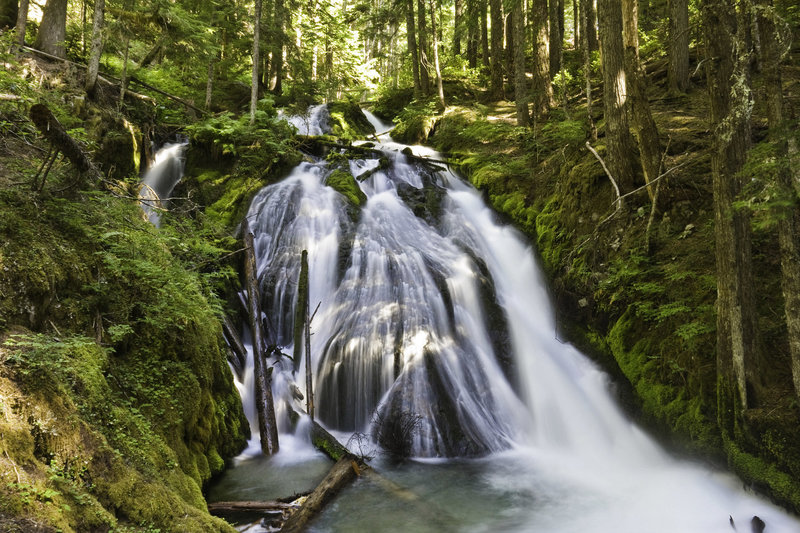 Little Zigzag Falls is a scenic destination for a kid-friendly hike. Photo courtesy of www.MtHoodTerritories.com