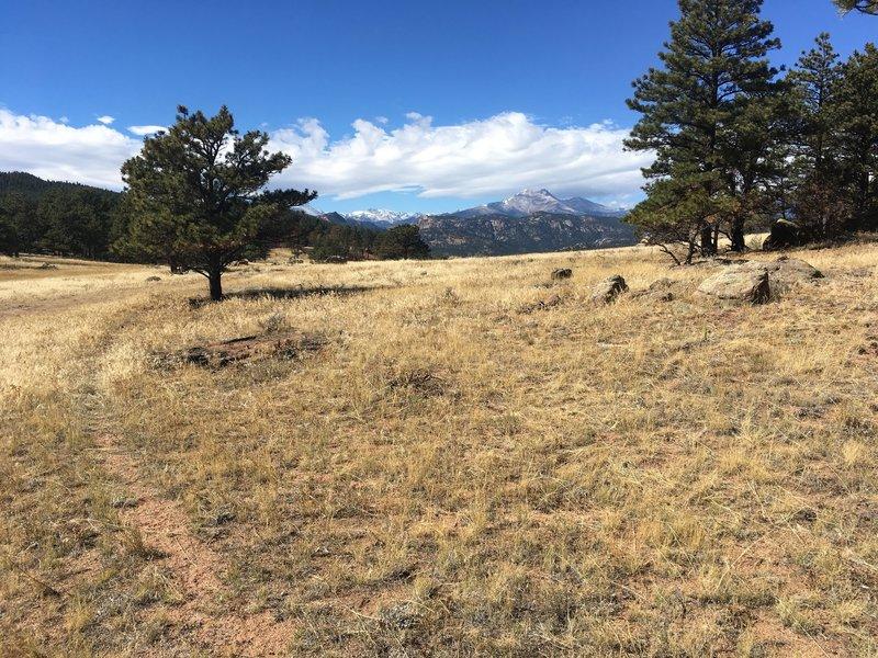 View of Mt. Meeker and Longs Peak.