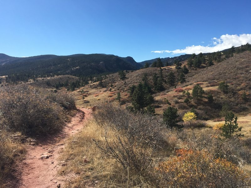Views of the trail and the general landscape.