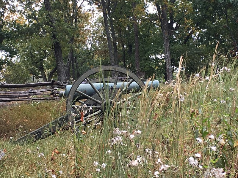Cannon with wildflowers.