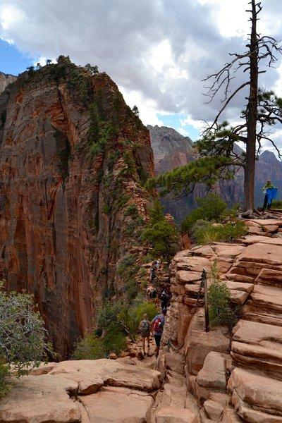 Angel's Landing Trail.