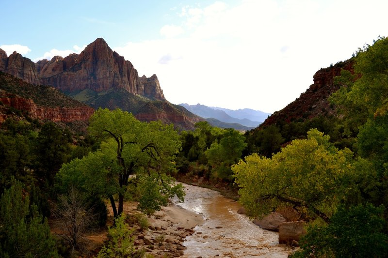 Zion National Park North Fork of the Virgin River after a heavy rain.