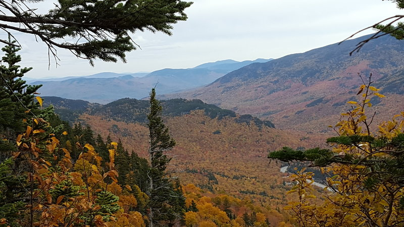 About 3/4 of the way up the trail in mid-October. Looking out in the direction of Mt. Washington.