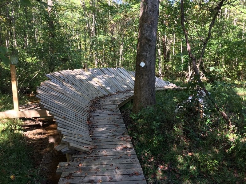 Artificial bank for mountain bikers. Most are man-made structures - bridges and boardwalks. Excellent maintenance.