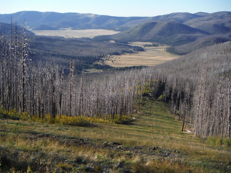 Valles Toledo and the northeastern corner of Valles Caldera National Preserve looking northwest from Pajarito Mountain.
