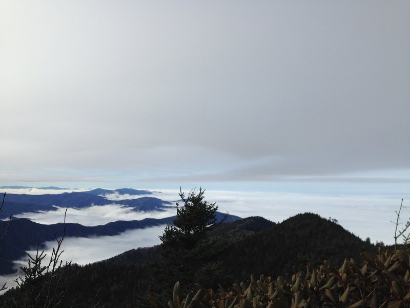 Above the clouds on Mt. LeConte summit.
