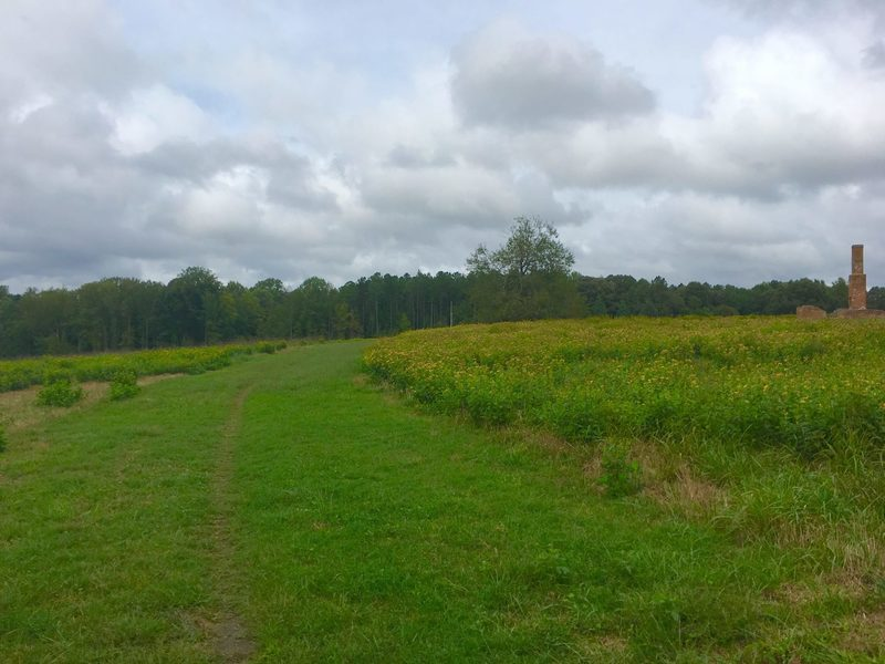 Singletrack on Poor Creek Trail with Taylor Farm/Site of Fort Morton.