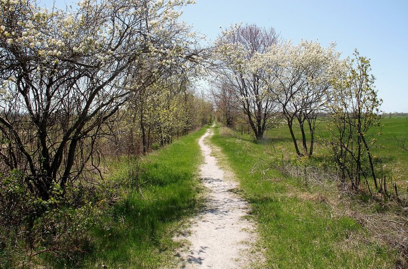 Spring on the Old Rail Trail.