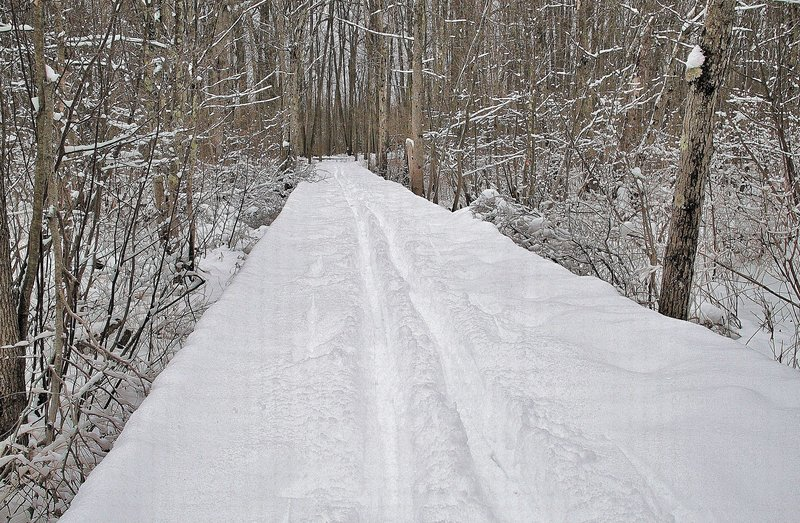 Winter along the boardwalk on the Discovery Trail
