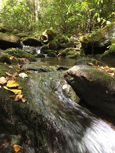 There are lots of nice areas to have a snack and refill your water supplies along Jonas Creek.