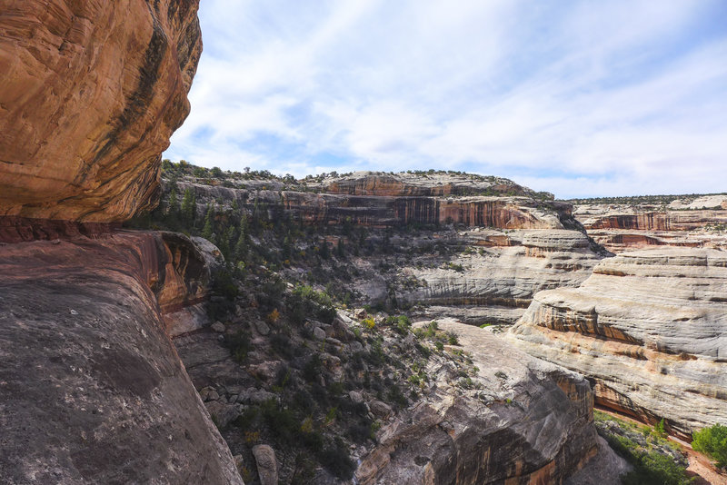 View of the White Canyon.