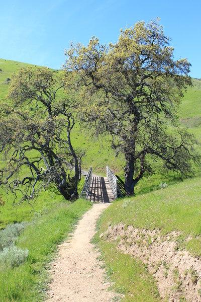 Sierra Vista Open Space Preserve.