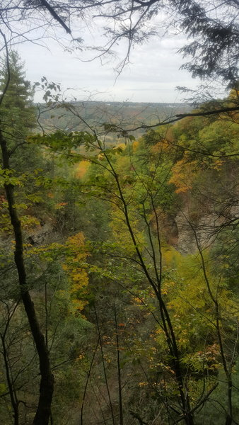 View of the gorge and the surrounding area.