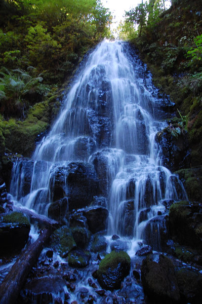A beautiful shot of the Fairy Falls.