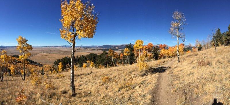 Beautiful fall day on the Colorado Trail heading southwest from Kenosha Pass.