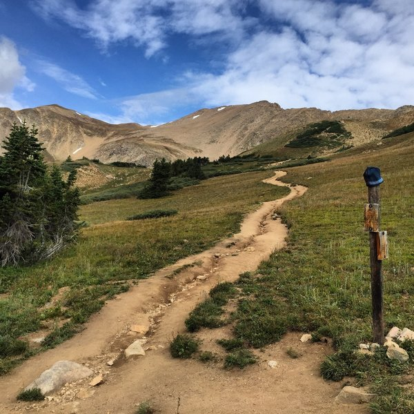 On Herman Gulch Trail, cresting treeline, almost there!