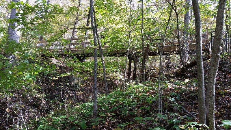 Bridge Trail bridge over ravine.