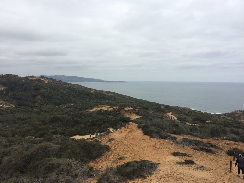 Overcast day in Torrey Pines State Natural Reserve.