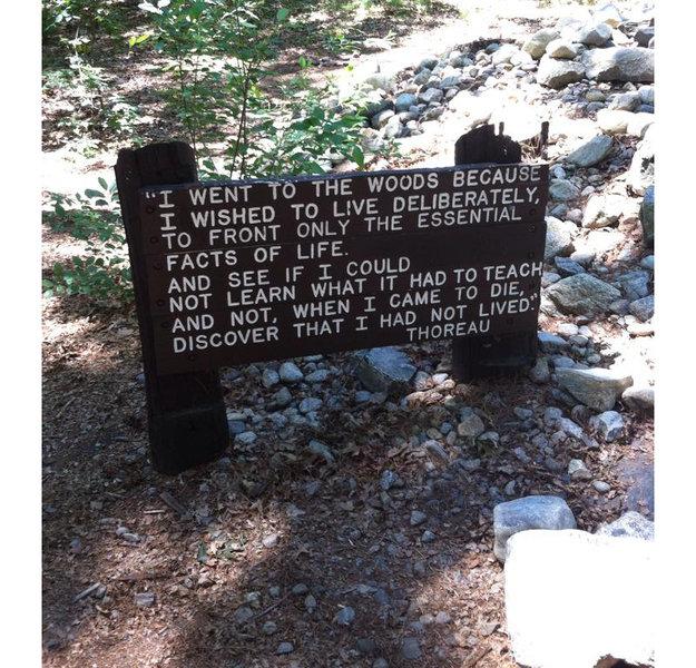 Thoreau's cabin site.