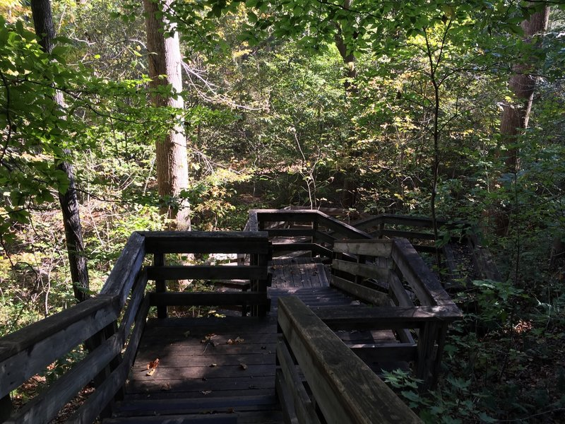 Stairs at Beech Tree Cove Overlook.