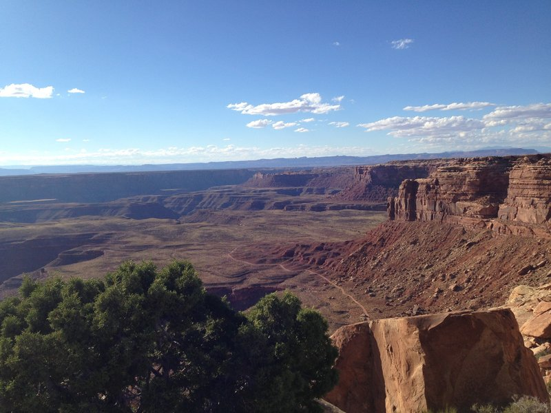 View from Muley Point.