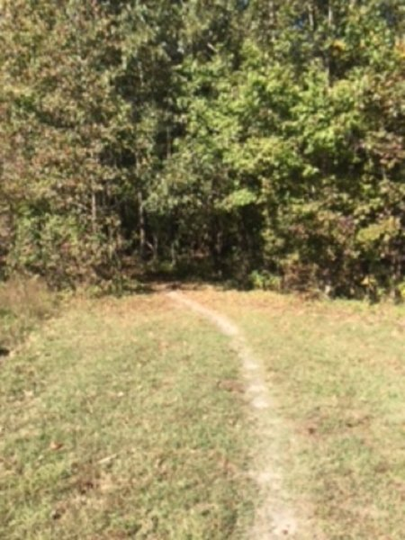 Poor Creek Trail leading into the woods past Taylor Farm/Site of Fort Morton.