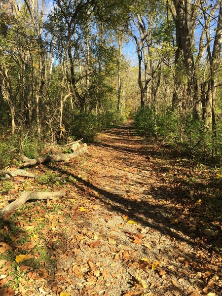 Englewood Green Trail