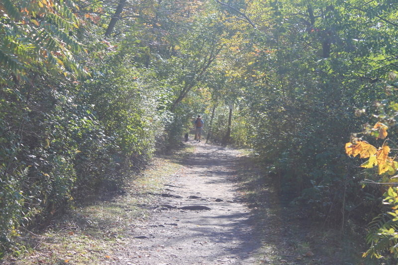 Hikers along the trail.
