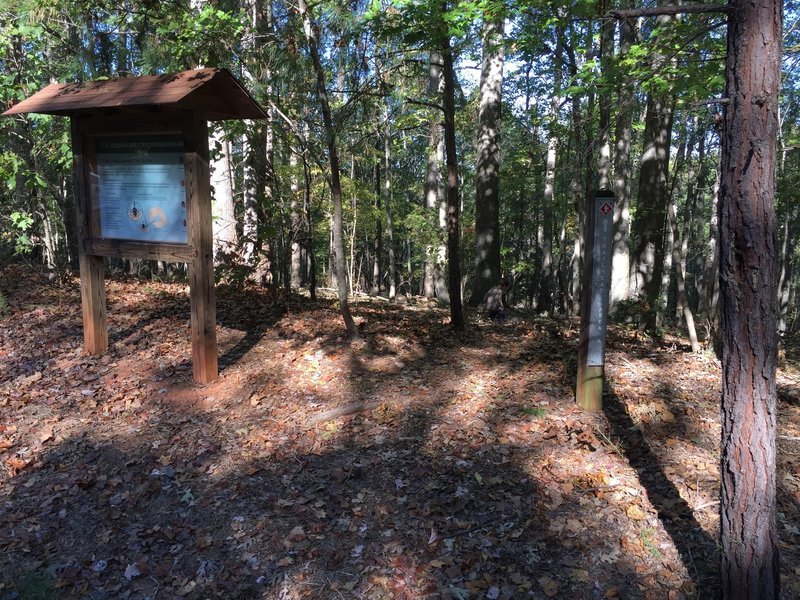 Red Loop Trailhead from Area B Campground parking lot.