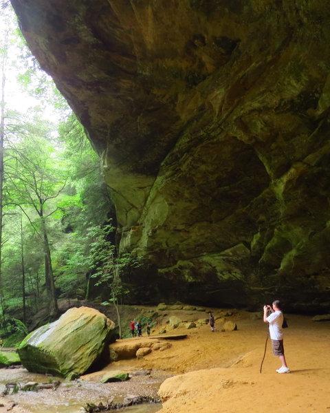 In the massive Ash Cave amphitheater.