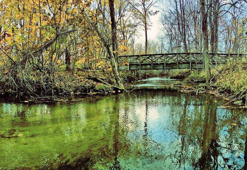 Bridge 7, early November, 2015.