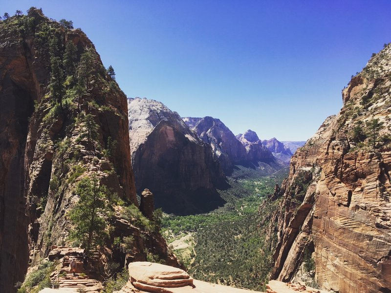 Angel's Landing. Zion National Park.