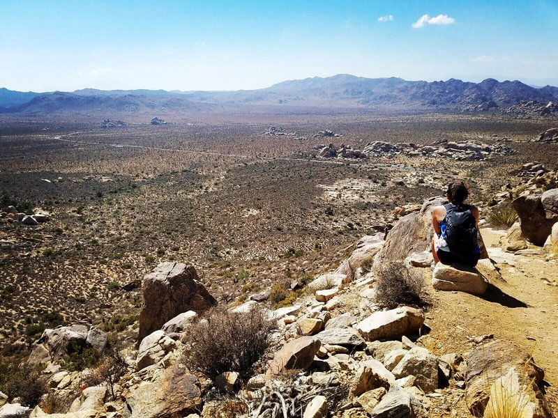 Ryan Mountain. Joshua Tree National Park.