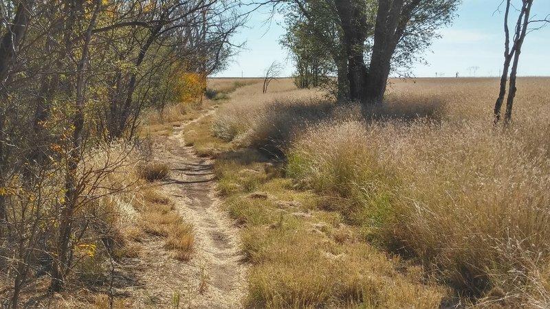 Plainview Trail.